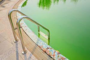 Come prevenire l'acqua verde in piscina